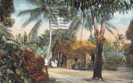 Puerto Rico - Native Hut - Puerto Rico