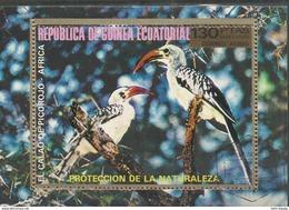 """Äquatorialguinea Block 246/247 """"Blocks Mit Abbildung Je 2 Afrikanischer Vögel"""", Gestempelt, Mi.:1,80 € - Äquatorial-Guinea"""