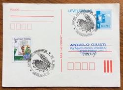 ALIMENTARI  GRANO E GIRASOLE SU ANNULLO SPECIALE SU CARTOLINA UNGHERIA DEL 1985 - Alimentazione
