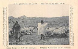 Liban Berger Moutons La Vie Pittoresque En Orient - Liban