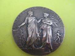 Médaille De Table / Ministère De L'Agriculture/Concours Central Hippique/Paris/Alphée DUBOIS/1925  SPO211 - Equitazione