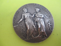 Médaille De Table / Ministère De L'Agriculture/Concours Central Hippique/Paris/Alphée DUBOIS/1924  SPO213 - Equitazione