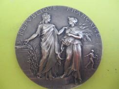 Médaille De Table/Minist. De L'Agric/Direction Des Haras/Concours Central Hippique/Paris/Alphée DUBOIS/Vers 1920  SPO214 - Equitazione