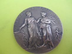 Médaille De Table/Ministére De L'Agriculture/Concours Central Hippique/Paris/Alphée DUBOIS/1908      SPO215 - Equitation