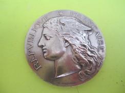Médaille De Table/RF/Ministére De L'Agriculture/Concours Régional Hippique/CHARTRES/H PONSCARME/Bronze/1896     SPO217 - Equitation