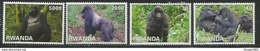 2010 Rwanda Rwandaise Mountain Gorillas  Tourism Primates Complete Set Of 4 MNH - Scimmie