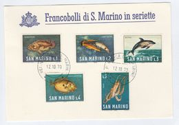 1970 SAN MARINO  COVER Special Card  DOLPHIN SQUID FISH Stamps - San Marino