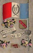 88 Souvenir De NEUFCHATEAU, Drapeau Tricolore - Neufchateau