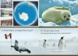 41 Cartes Postales :  Voir Description - Monde