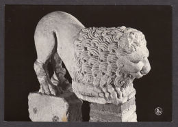 78096/ NAMUR, Musée Archéologique, Lion En Pierre Ayant Servi De Fontaine (d'Anthée) - Namur
