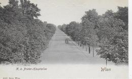 AK 0778  Wien ( K. K. Prater-Hauptallee ) Um 1900-1910 - Prater