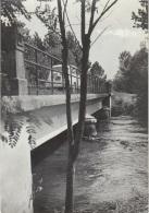 Cartolina Varmo (UD) 1960 - Altre Città
