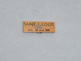 Pin's SAINT LOUIS, ASSEMBLEE GENERALE 21-06-1991 - Sonstige