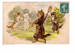 Chat Humanisé Illustration Chats Humanisés Jouant Au Tennis Cat Katze Balleraquette Filet  Cpa 1909 - Katten