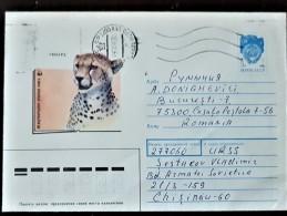 URSS, RUSSIE,  WWF, Leopard, Entier Postal Emis En 1990 Et Ayant Circulé - Brieven En Documenten