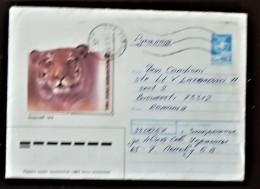 URSS, RUSSIE,  WWF, TIGRE, Entier Postal Emis En 1988 Ayant Circulé - Brieven En Documenten