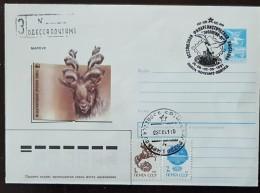 URSS, RUSSIE,  WWF, Bouc  Marsur, Entier Postal Emis En 1988 Avec Obliteration Oiseau - Brieven En Documenten