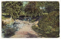 Cleveland OH, Rockfeller Park View, Doan Brook 1900s Vintage Ohio Postcard M8575 - Cleveland