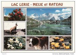82aLac Lerie, Meije Et Rateau (pli Miniscule L?g. Gauche Inf.) - France