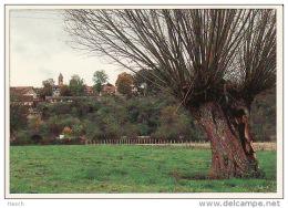 765aTaiz?, Le Village - Altri Comuni