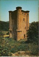 Arques (Aude)  Le Château  Cpsm Format 10-15 - France