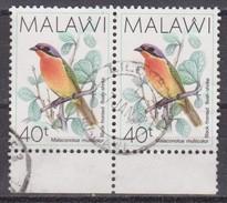 Malawi, 1988 - 40t Black-fronted Bush Shrike, Coppia - Nr.527 Usato° - Malawi (1964-...)