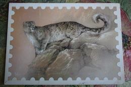 Snow Leopard   / Irbis By Isakov - Old USSR Postcard 1987 - Tigers