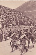 MILITARIA---Col Du Lautaret Pour Y Acclamer L'armée--( Sortie Carnet )---voir 2 Scans - Manoeuvres