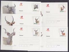 South Africa 1997 Postal Stationery 5 Postcards Unused (37009) - Brieven En Documenten