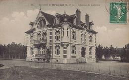 BRACIEUX - Chateau De Cobrières - Frankreich