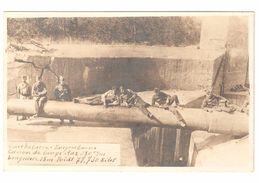 Koekelare / Leugenboom - Originele Fotokaart - Canon De Lange Max - WW1 - Oorlog 1914-18 - Geanimeerd - Soldaten - Koekelare