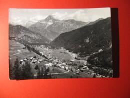 CARTOLINA  FALCADE AGORDINO      - D 521 - Belluno
