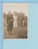 Grande  Photo D'époque - Trois Femmes Dans Un Jardin - Photos