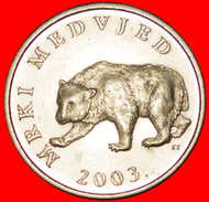 √ BEAR: CROATIA ★ 5 KUNA 2003.! LOW START ★ NO RESERVE! - Croatia