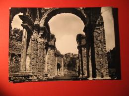 CARTOLINA   GENAZZANO NINFEO        - D 568 - Italy