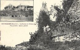 CARTE POSTALE ORIGINALE ANCIENNE : NEUFMARCHE LES RUINES DU CHATEAU FORT ANIMEE SEINE MARITIME (76) - France