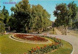 CPSM Valladolid    L2393 - Valladolid