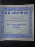 TANGEROISE PASMOL             1956        TANGER MAROC - Afrique