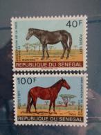 SENEGAL 1971 Y&T N° 343 & 344 ** - AMELIORATION DE LA RACE CHEVALINE - Sénégal (1960-...)
