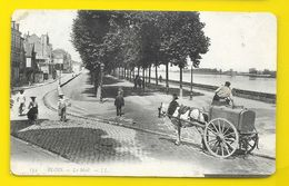 BLOIS Le Mail (LL) Loir & Cher (41) - Blois
