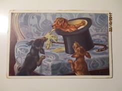 DOGS , BASSET , DACHSHUND  , OLD POSTCARD , O - 1900-1949