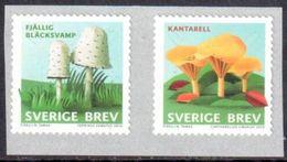 Suède 2015 Champignons ** Avec Numéro Au Verso - Neufs