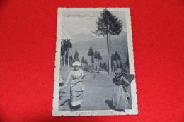 Carnia Presso Udine Trachten Costume Folklore 1915 + Timbro La Carnia Stazione Frazionario Non Comune++++ - Udine