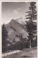 Lechleiten Mit Biberkopf (584) * 4. 8. 1932 - Lechtal