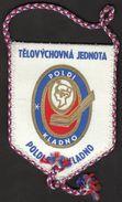 Ice Hockey / Flag, Pennant / Czech Republic / TJ Kladno - Habillement, Souvenirs & Autres
