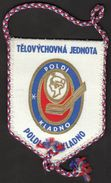 Ice Hockey / Flag, Pennant / Czech Republic / TJ Kladno - Kleding, Souvenirs & Andere