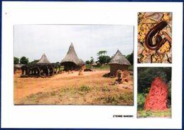Cote D'Ivoire. Case à Fètiche , Mille-pattes, Termitière - Costa D'Avorio