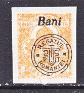 ROMANIAN  OCCUP. HUNGARY  2nd. TRANSYLVANIA'  NAGYVARAD  6 N P 1    **. - Transylvania