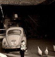 Photo Carrée Bords Blancs Originale Volkswagen Coccinelle, Beetle, Käfer à La Ferme & Gamin Nourrissant Les Poules 1960 - Personnes Anonymes