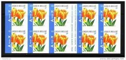 B/C 54 - BUZIN - Bloemen/fleurs - Darwinhybrid Tulp/tulipe  - Ongetand/non Dentelé/unperforated  - XX - Belgique